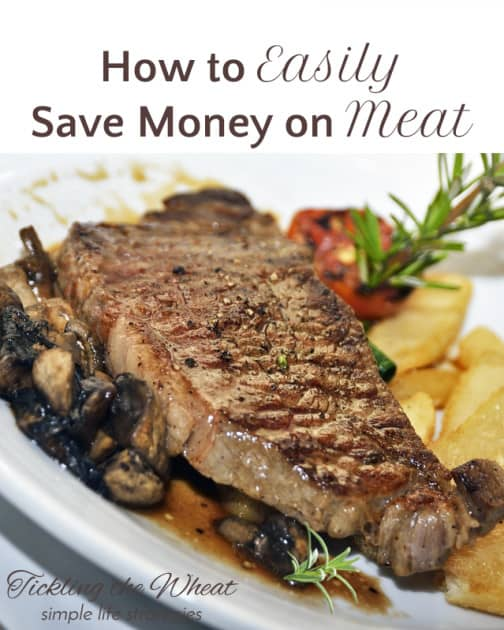 It can be difficult to find healthy, quality cuts of meat for a decent price, but it can be done! Try these tips to easily save money on meat!