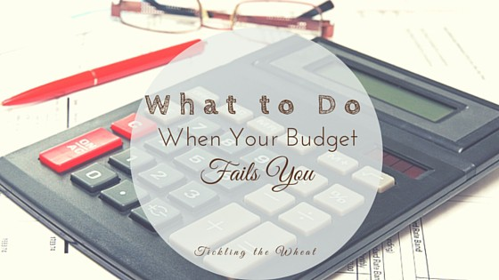 What to do When Your Budget Fails You