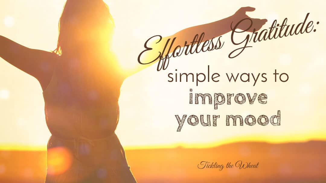 Effortless Gratitude: 4 Simple Ways to Improve Your Mood